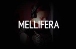 photos of Mellifera